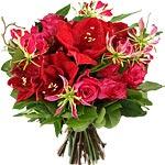 fleurs4.jpg